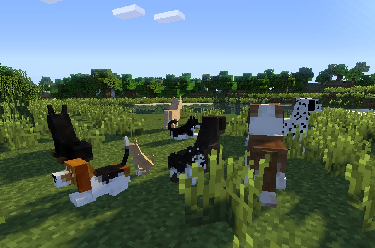 Name Dogs In Minecraft